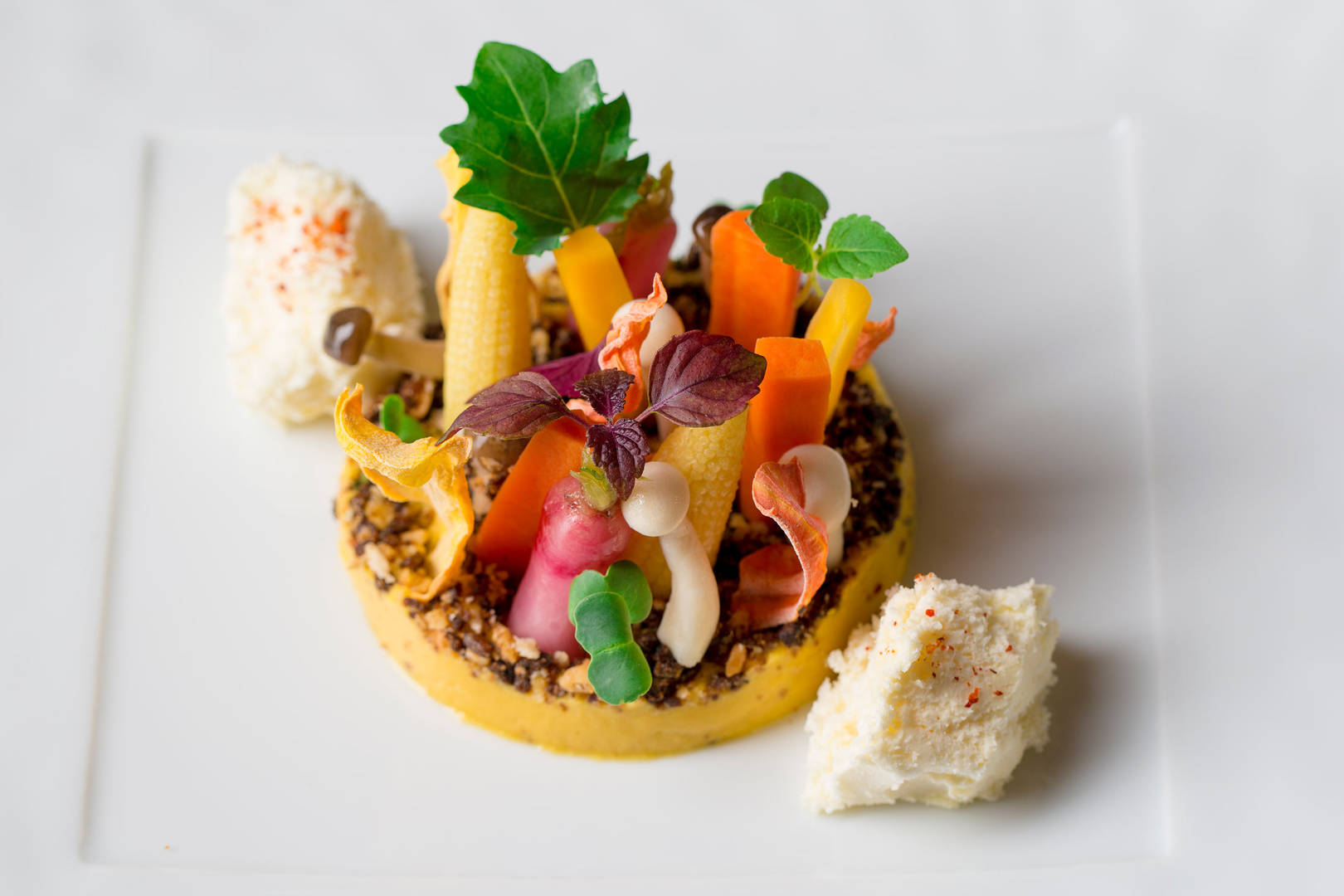 https://cdn.jumeirah.com/-/mediadh/DH/Hospitality/Jumeirah/Restaurants/Frankfurt/Frankfurt-Max-On-One-Grill-Room/Restaurant-Gallery/Jumeirah-Frankfurt-Max-on-One-Vegetables-with-Goat-Cheese_6-4.jpg?h=1080&w=1620&hash=30AAD9DCB96EF6D3E64D1328C62CE2B8