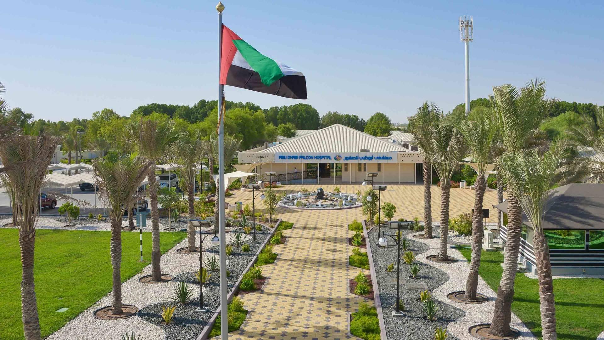 Abu Dhabi for kids - falcon hospita