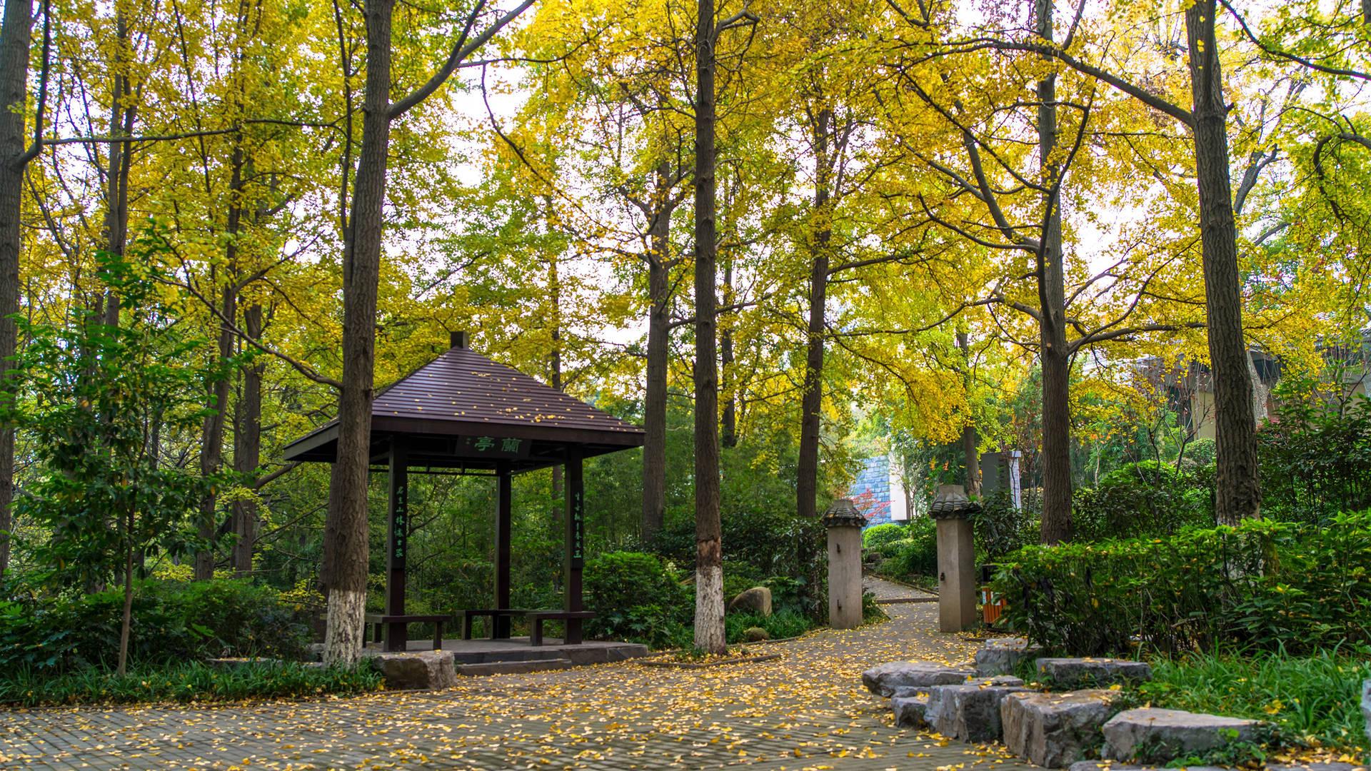 Qinglianshan Park