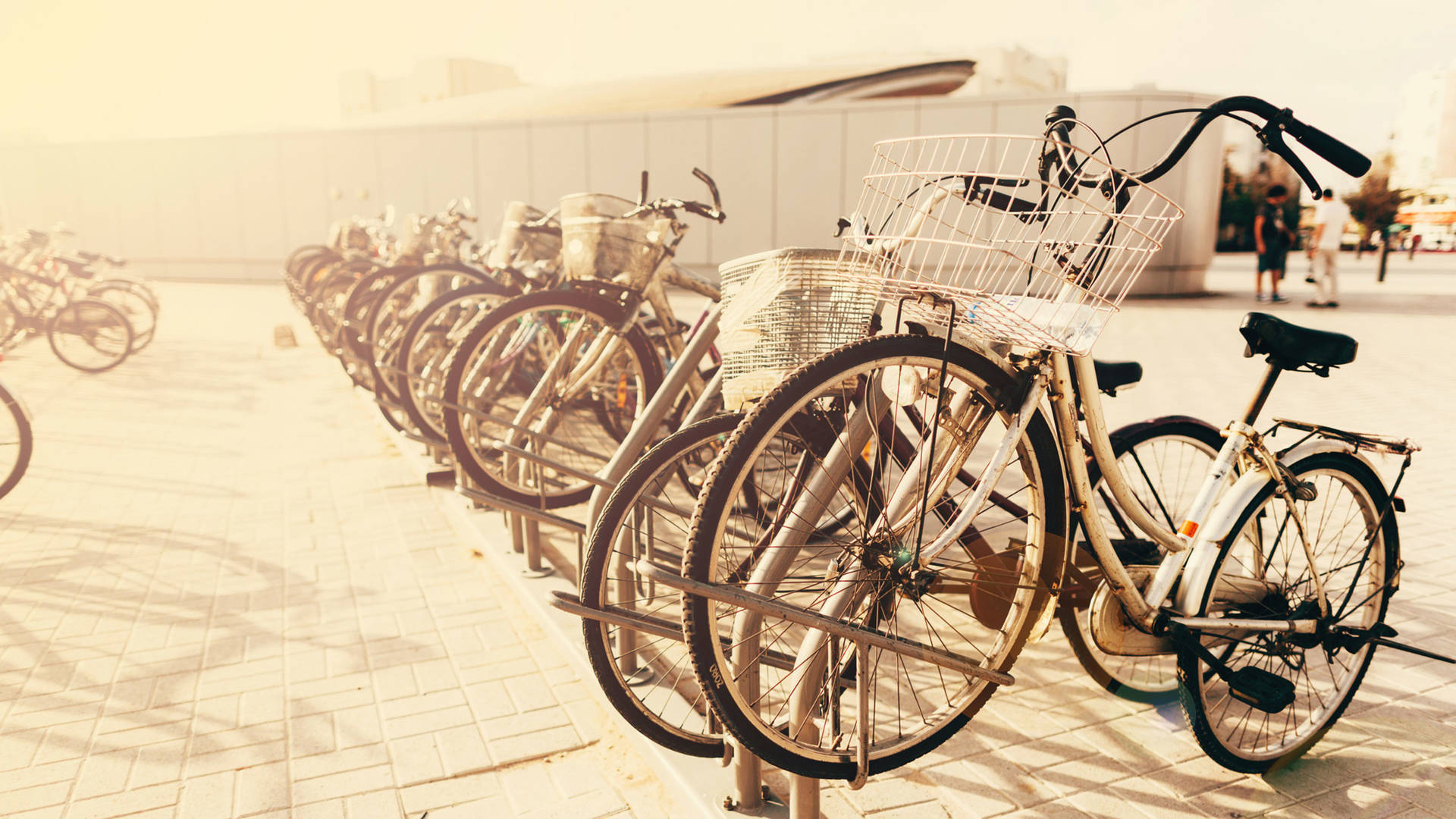 Bicycling - Ways to Keep Active in Dubai