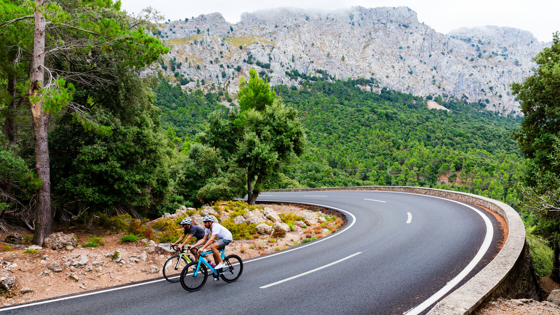 Cyclists riding in Mallorca