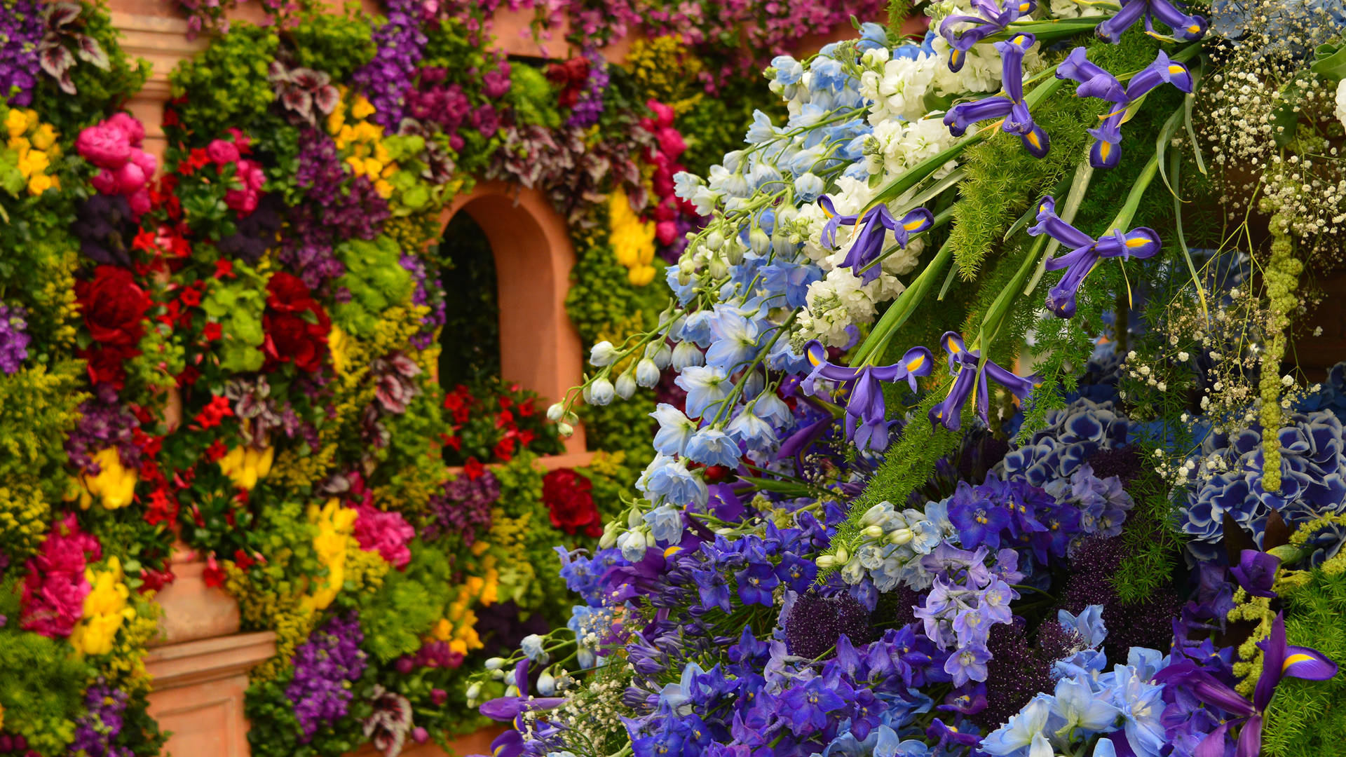 Flowers at the Chelsea Flower Show in London