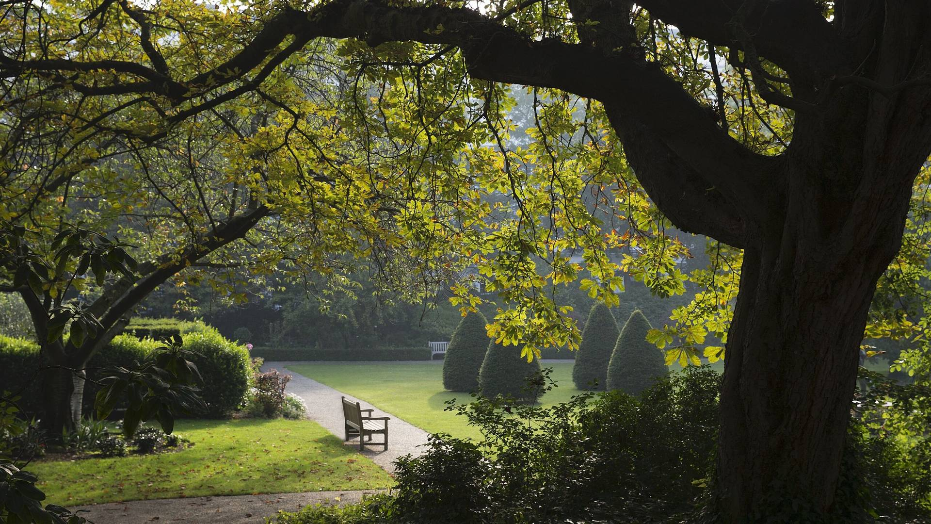 One of London's Royal Parks