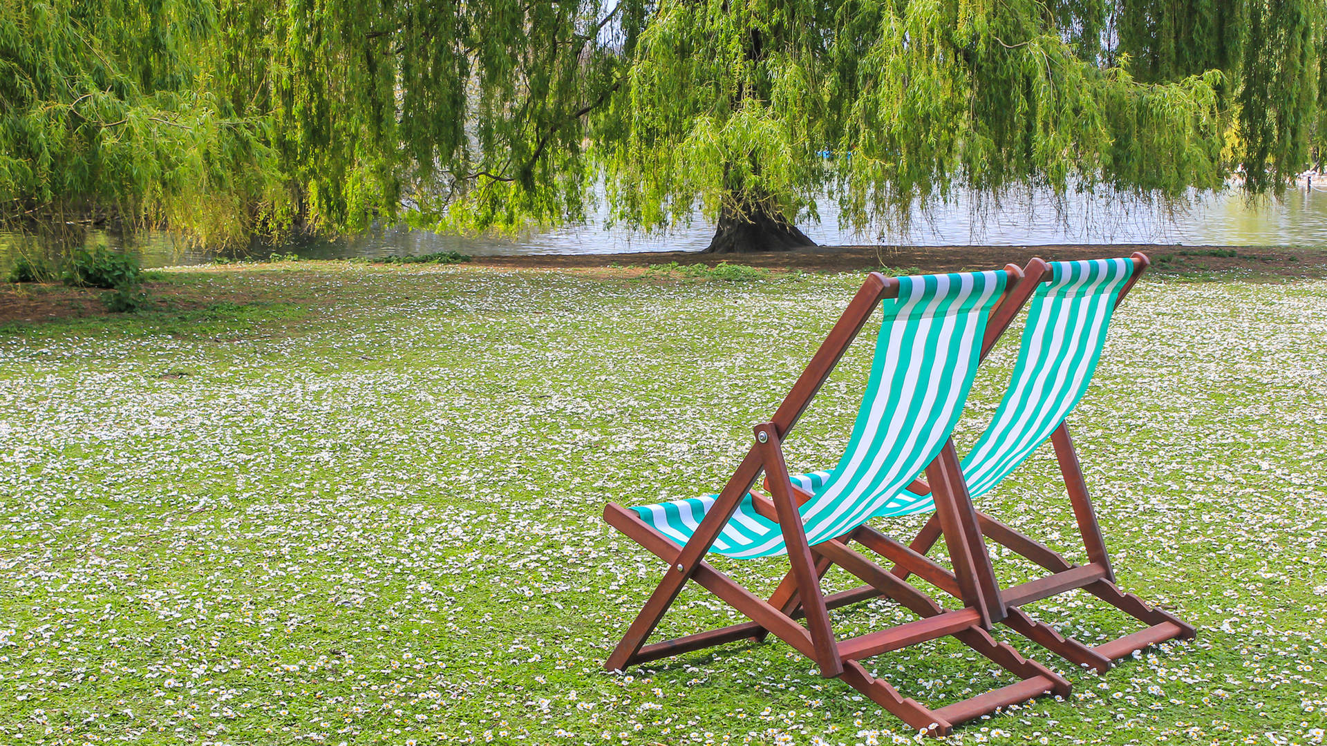 Hyde Park deck chairs